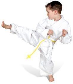 Ronin Karate Pupil wit